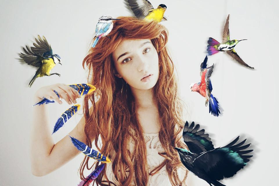 The Birds  #FreeToEdit  #dailyremix  #birds #feathers #dodgereffect