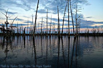 bayoukayaker nature photography summer sunset