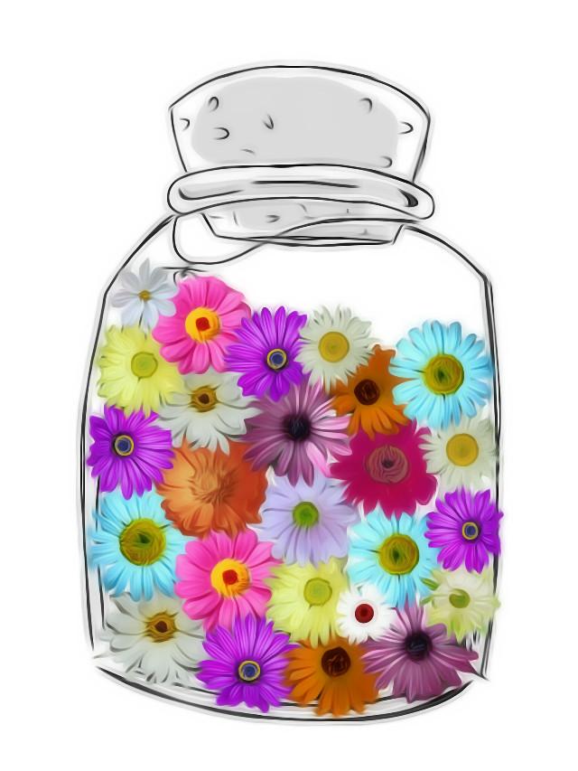 #freetoedit  #flowers