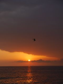 sunset sea photography
