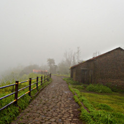 photography nature nikon rain fog freetoedit