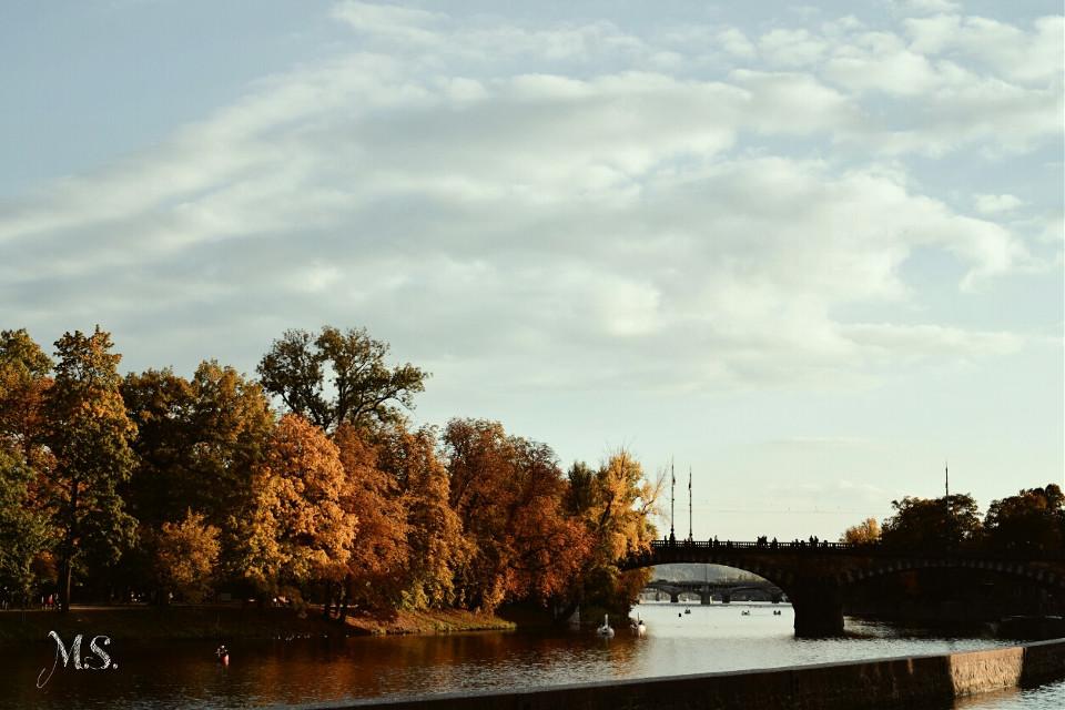 #prague  #autumn  #colorful  #bridge  #river  #nature  #photography  #dpcbridges
